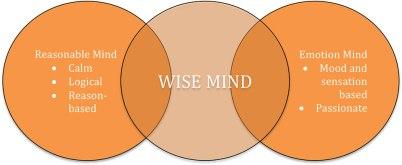 dysregulation-wise-mind