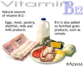 vitamin b12 sources