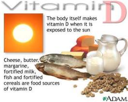 vitamin-d-food-sources