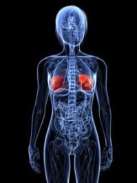 breast-cancer-gene-225x300